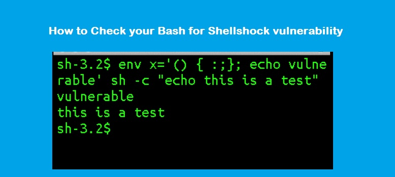 update bash from source