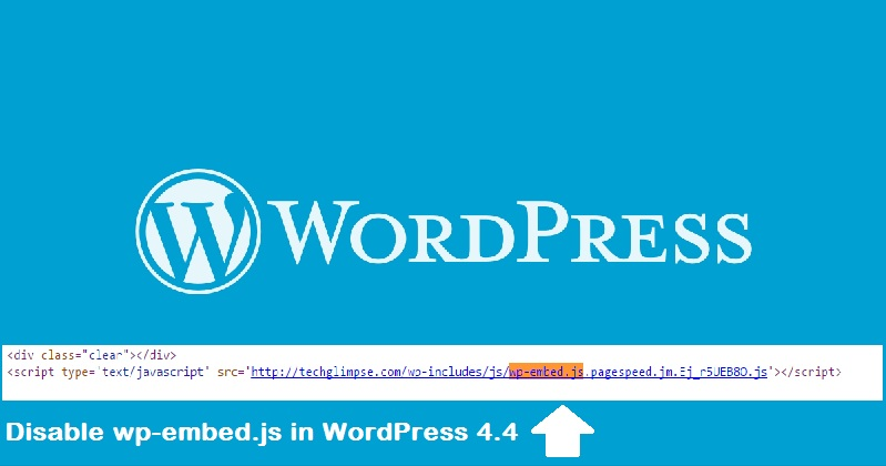 wordpress embed script