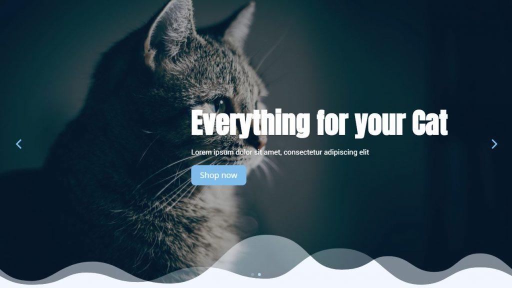 Homepage Divi Slider
