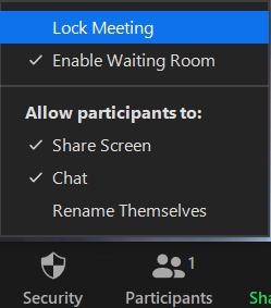 Lock zoom meetings