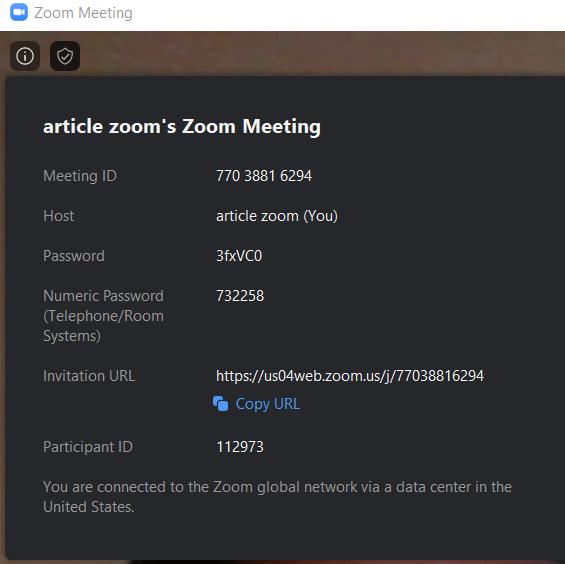 Zoom meeting details info